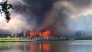 """Bezoekers Beekse Bergen getuigen over zware brand: """"Je hoorde een gasfles ontploffen"""""""