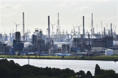 Belgisch klimaatbeleid schendt mensenrechten: wat betekent dit oordeel en hoe moet het nu verder?