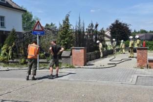 Hagen en boom in Kiewitse tuin schieten in brand bij wegbranden van onkruid