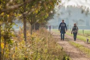 Wiekevorstse Stappers stippelen lokale tochten uit als alternatief voor Nationale Wandeldag