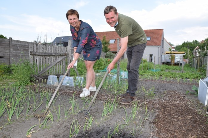 """Groenselhof bestaat tien jaar en zoekt nieuwe, groene vingers: """"De oogst mag mislukken: hier zien we liever mensen bloeien"""""""