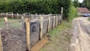 """Gloednieuwe houthakseldam doorstaat eerste echte test: """"Het was veel erger geweest zonder die dam"""""""
