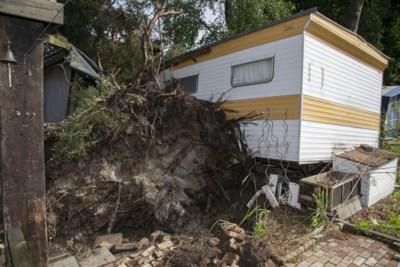 """Windhoos veroorzaakt ravage op camping: """"Kampeerders net uit hun tentje geraakt voor boom afknakte"""""""
