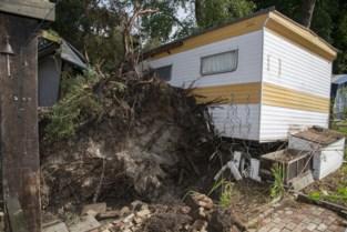 """Ravage op Campinastrand en omgeving: """"Nog nooit zo hard zien waaien"""""""