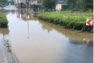 Nachtelijk onweer treft Asse, vooral Mollem kampte met wateroverlast