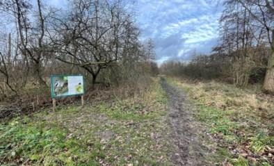 Gemeenteraad Kinrooi: 'Tuinrangers' gaan de natuur in Kinrooi een handje helpen