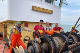 """Oostendse kok laat zich inspireren door bekende vissersfamilie en leerlingen school aan boord van de 'O.29 Broodwinner': """"Ik wil mensen bewust maken van wat de zee ons te bieden heeft"""""""