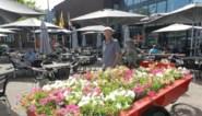 Brasserie De Mart organiseert zomer vol nostalgie