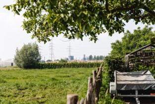 Wat als je grond ernstig vervuild blijkt met PFOS? Ga je moeten saneren? En wat met de huizenprijzen?