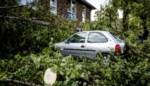 Verschillende huizen onbewoonbaar na hevig onweer in Nederland