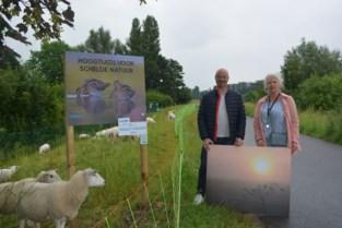 Wandel en bewonder natuurfoto's langs de Schelde
