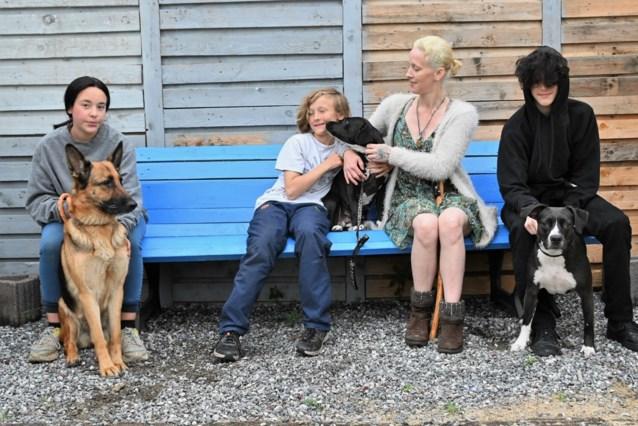 Prince krijgt hulp van hondentherapeut
