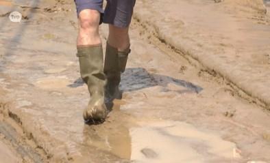 Sint-Lievens-Houtem werkt aan erosieplan om modderstromen tegen te gaan