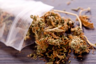 Beroepschauffeur die rijdt onder invloed van cannabis speelt rijbewijs kwijt