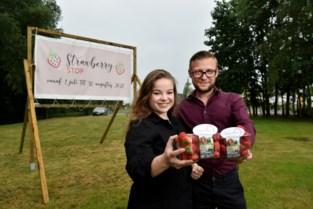 Studenten openen drive-in vol lekkers op basis van aardbeien