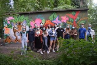 Graffitikunstenaars pimpen elektriciteitskast met tekeningen
