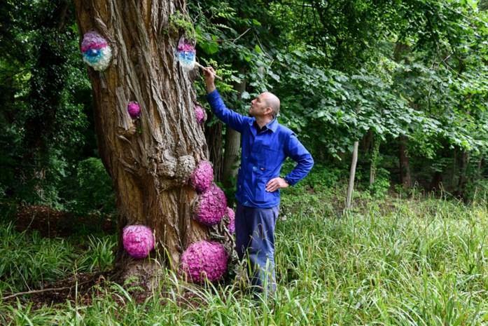 """Zaza maakt van Boekenbergpark een Babbelbos: """"Overal zie ik gezichten"""""""