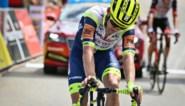 """Intermarché - Wanty Gobert kiest voor andere aanpak in de Tour de France: """"In sprintritten gaan we niet mee in de vroege vlucht"""""""