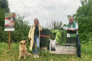 Borden herinneren aan verplichting hondenleiband, maar mogelijk tweede losloopzone op komst
