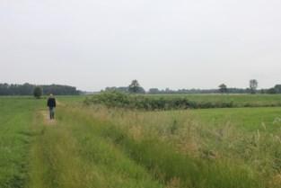 """Aankoop landbouwgrond brengt stadsrandbos dichterbij: """"Dit past bij de ambitie van meerjarenplan"""""""