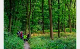 Kleinere landschapsprojecten kunnen tot 3.000 euro steun krijgen