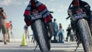 RECENSIE. 'Dark rider' van Eva Küpper: Koppig en blind voor beperkingen