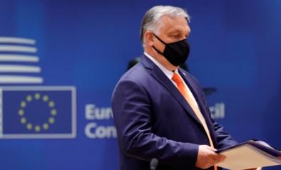 Rutte vraagt Orbán waarom hij EU niet verlaat