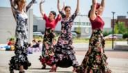 Samina van 'De Mol' verrast met flashmob met haar flamencoschool