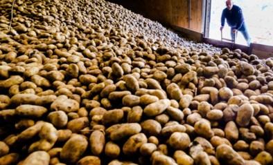 Fikse boetes en celstraffen voor gesjoemel met aardappelen