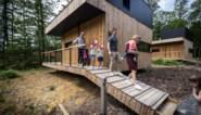 De schoonheid van de wilde natuur: kijk binnen in dit ecologische natuurhuisje