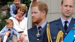 Wordt het openlijke verzoening of nog koudere oorlog? D-day voor prinsen Harry en William bij onthulling standbeeld voor prinses Diana