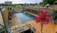 Bouchez verontwaardigd over toelaten boerkini in openluchtzwembad Anderlecht