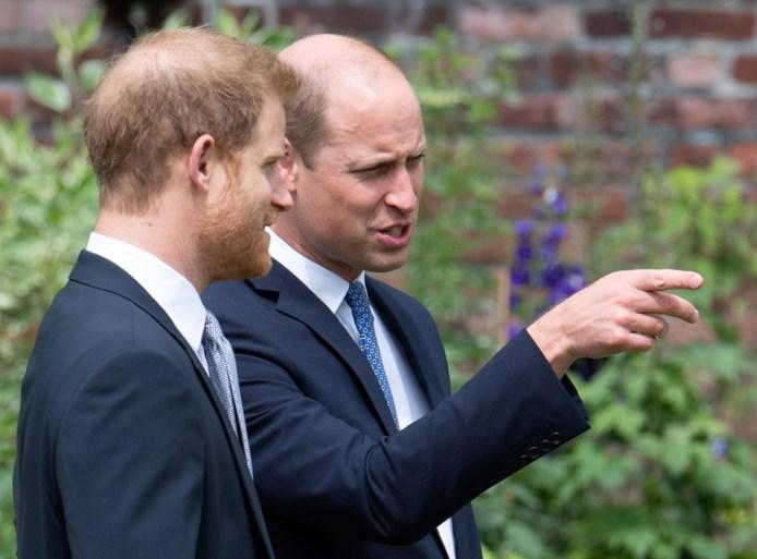 """Biograaf van prins Harry beschuldigt entourage van prins William """"verhalen te verzinnen over mentale gezondheid van zijn broer"""""""
