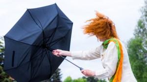 """KMI kondigt code geel af: dinsdag windstoten tot 75 km/u """"en aan zee mogelijk nog wat meer"""""""
