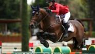 Nog een Belgische Tokio-ganger: dochter van Bruce Springsteen trekt met Belgisch paard naar Olympische Spelen