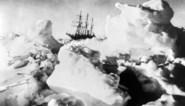 Nieuwe expeditie Antarctica: de ultieme zoektocht naar de 'Endurance', het wereldberoemde schip van Sir Shackleton