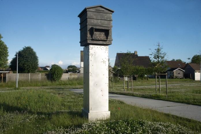 Drie jaar geleden vol trots ingehuldigd, maar is kunstwerk in Zedelgem eerbetoon aan Waffen SS en 12.000 collaborateurs?