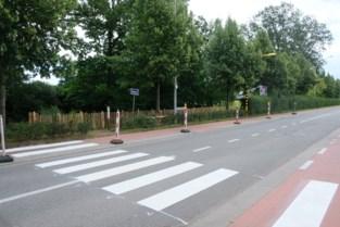 Zebrapad maakt oversteek Horstebaan veiliger
