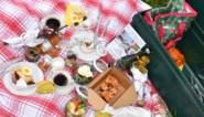 Afvalvrije picknicktafel promoot duurzaamheid in Mechels Vrijbroekpark