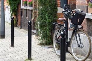 Inwoners kunnen straatbeeld verfraaien met tegeltuintje