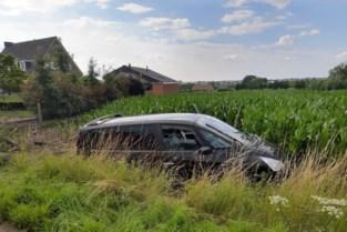 """Bestuurder (60) wordt onwel en sterft in maïsveld: """"Tweede dodelijk voorval in enkele weken tijd"""""""