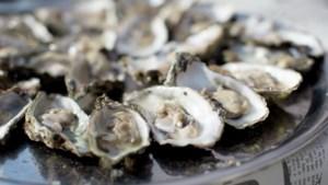 Snel en stijlvol hapje: zo maak je oesters klaar op de BBQ