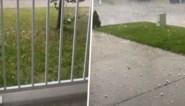 """Hittegolf in Canada eindigt met spectaculaire storm: """"Hagelstenen zo groot als golfballen"""""""