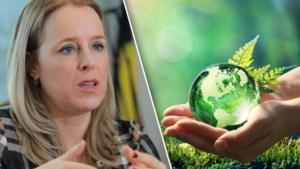 Meer en meer bedrijven profileren zich als ecologisch en duurzaam, maar zijn ze dat ook? Regering zwaait nu met boetes