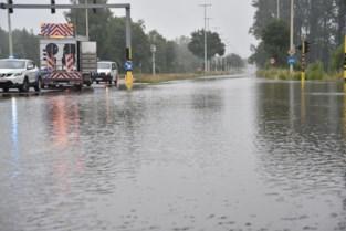 Van Sint-Truiden tot Lanaken en Lommel: overal in Limburg straten en kelders onder water