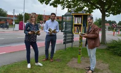 Bewoners Zonnehoeve en beroepsleerlingen plaatsen beschilderde boekenkasten