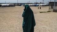Nadat ze hun ideologie afzworen en DNA-test afleverden: zes IS-moeders en hun tien kinderen geland in ons land