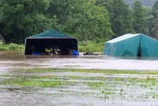"""Chiro Jap start crowdfunding na verlies kampmaterialen: """"40.000 euro verloren en de teller loopt nog verder"""""""