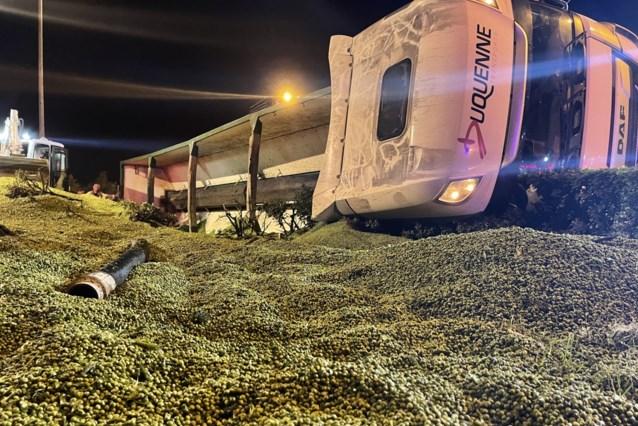 """Dertig ton erwten belandt op de weg nadat vrachtwagen kantelt bij rotonde: """"Als dit overdag gebeurd was..."""""""