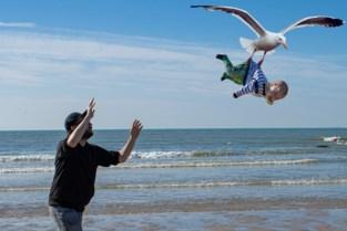 Vlaamse papa scoort internationaal met hilarische photoshop van zijn twee kinderen